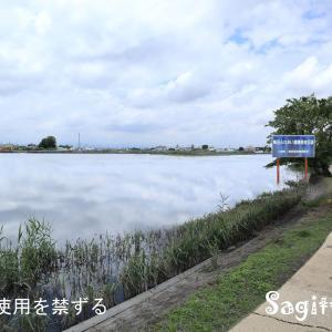 伊佐沼散歩❸まぼろしの風景