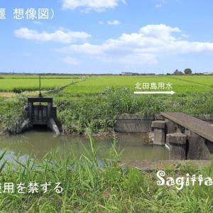 赤間川散歩❾北田島堰をしのぶ