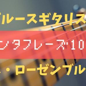 【ブルースギター】Seth Rosenbloomのアドリブフレーズ10選