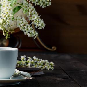 実は知らない人が多い?お茶って最初は全部同じ茶葉で出来ている!~お茶の豆知識も添えて~|化粧品専門店柳屋