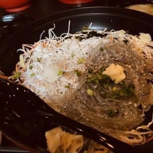 【プチ旅行記】ほぼ地元な江の島のお気に入りしらす丼を紹介してみた