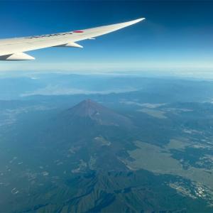 【旅行記】早朝便で伊丹へ 関西歩き旅①