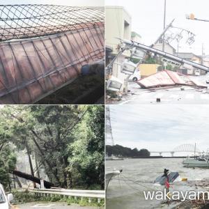 台風21号による被害と農作物の塩害