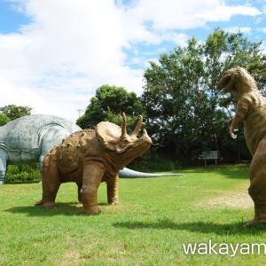 森林公園(人と自然のふれあい公園) 恐竜とアジサイ園 – 和歌山市