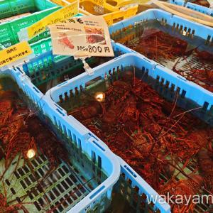 もとや魚店 みなべ町の鮮魚 干物の販売・海鮮ランチ