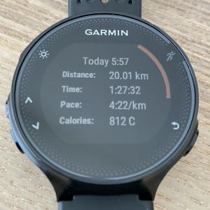2020/7/25 ウェーブ走 16km