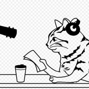 GMOペパボの噛み動画(NHKおはよう日本)は何回再生しても面白い!