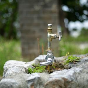 公園の飲み水