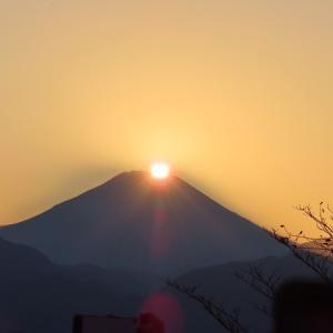 今頃 高尾山では 懐古・現在・未来