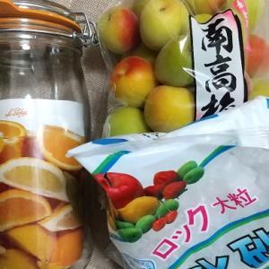 ZUMBAから梅シロップ