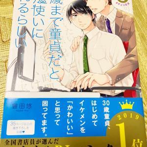 【BL漫画感想】30歳まで童貞だと魔法使いになれるらしい 2巻 豊田悠 &ドラマ情報