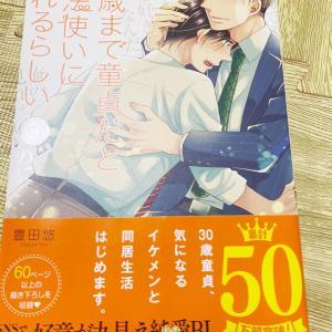 【BL漫画感想】30歳まで童貞だと魔法使いになれるらしい 3巻 豊田悠
