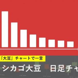 本日の注目チャート【大豆】