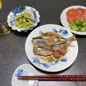 バズビデオvol.21【vlog・日常・料理】お昼ごはん・一人晩酌準備