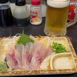 バズビデオvol.23【vlog】(後編)老舗回転寿司のお寿司屋さんで新鮮なお刺身