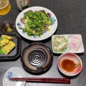 バズビデオvol.29【vlog・日常・料理】一人晩酌準備(炭火焼カツオのたたき・他)