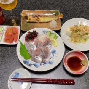 【vlog・日常・料理】一人晩酌(天然真アジ刺身・他)