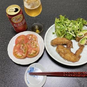 【vlog・日常・料理】一人晩酌・晩酌後の後片付け