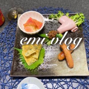 【vlog・日常・料理】朝の日常・お昼ごはん・冷蔵庫にある食材で一人晩酌