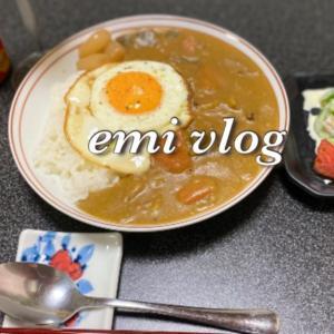 【vlog・日常・料理】夜ごはん 2日目の夏野菜カレーライス
