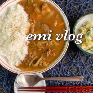 【vlog・日常・料理】お家にある食材でカレーライス・マカロニサラダを作りつつ冷凍ご飯