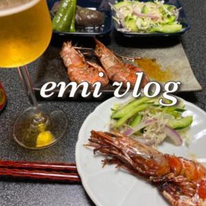 【vlog・日常・料理】一人晩酌/赤エビでおつまみ・他
