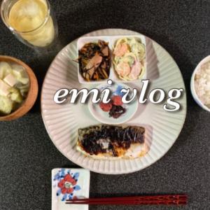 【vlog・日常・料理】作り置きを作りながら新米でお昼ごはん(前編)
