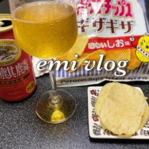 【vlog・日常・料理】一人晩酌/おつまみ・豚肉の甘辛炒め・別腹には・・(後編)