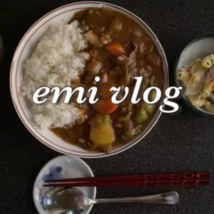 一人暮らしのお家にある食材でお昼ごはん/カレーライス・マカロニサラダ