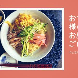 【お昼ごはんvlog】おひとり様 サッパリ・ツルン〜っと美味しいごく普通のお昼ごはん