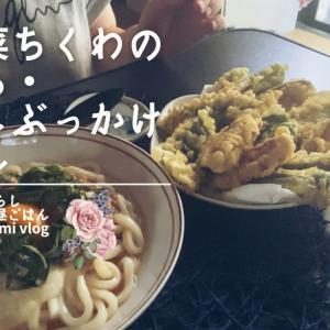 【40代最後おひとり様お昼ごはんvlog】夏野菜ちくわの天ぷら・冷やしぶっかけうどん・ブルームーンの薔薇のお花のご紹介