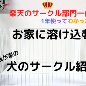 楽天1位!【犬のサークルレビュー】ホワイトでインテリアにも合う!