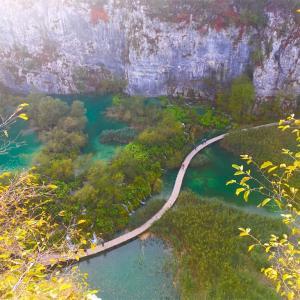 【クロアチア④】スプリット→プリトヴィッツェ湖群国立公園→ザグレブへ
