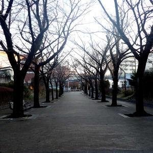 赤羽緑道公園から赤羽自然観察公園(東京都北区) 線路跡のある公園