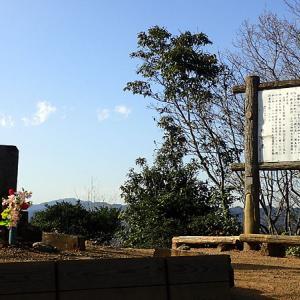 多峯主山(埼玉県飯能市)快調に山を上れます