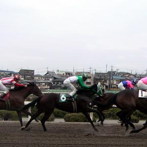 浦和競馬場(埼玉県さいたま市)南関東公営の地味な存在