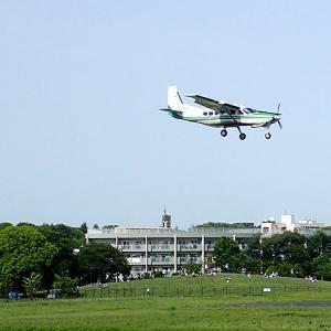 武蔵野の森公園(東京都府中市)絶好の飛行機鑑賞ポイント