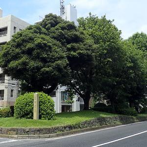 西ヶ原一里塚と七社神社(東京都北区)日光まで続く街道の2里目