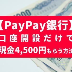 PayPay銀行の口座開設でお得なポイントサイトは?4,500円ゲットのチャンス!