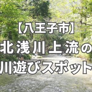 【八王子市】北浅川で川遊び!夕やけ小やけふれあいの里がおススメ