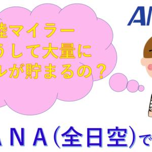 【ANA】陸マイラーのマイルの貯め方!どうして大量にマイルが貯まる?
