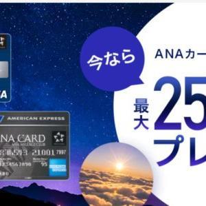 【2020秋】ANAカード入会キャンペーンがやばい!紹介キャンペーンと併用可能で最大13マイル以上獲得!