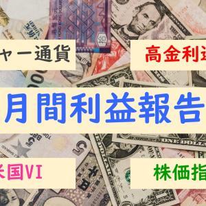【月間利益報告】2020年1月