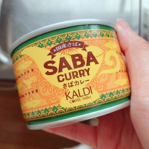 KALDIサバカレーを使った、常備菜格上げ時短レシピ✨