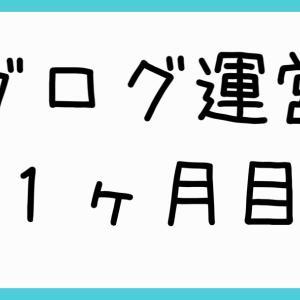 【ブログ運営報告】1ヶ月目、京大生一橋生がブログやってみた アクセス数は?収益は?