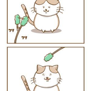 第64話「猫じゃらしと猫」