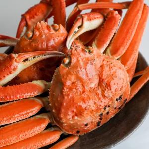 ズワイガニは通販やふるさと納税返礼品でも人気!ブランド蟹、美味しい旬や食べ方について調べてみた