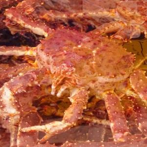 タラバガニは通販やふるさと納税の返礼品としても人気!蟹の美味しい旬や解凍方法なども解説