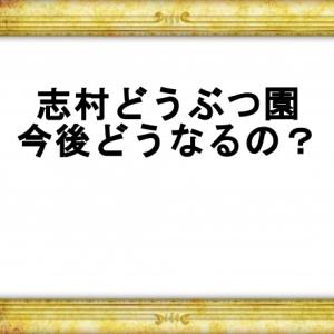 志村どうぶつ園今後どうなるの?園長不在で続行?それとも番組終了?