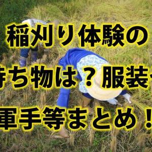 新米の稲刈り収穫体験の持ち物は?チクチクしない服装や靴や軍手等まとめ!
